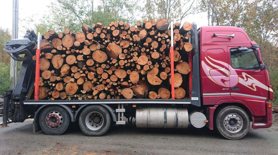 carico legna camion trasporto